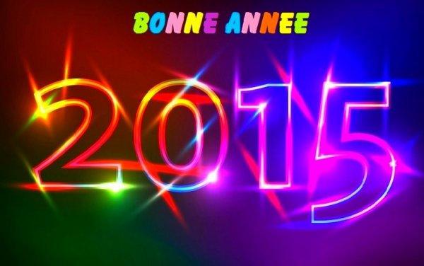 Bonne et heureuse année à tous en vous souhaitant le meilleur !!!!