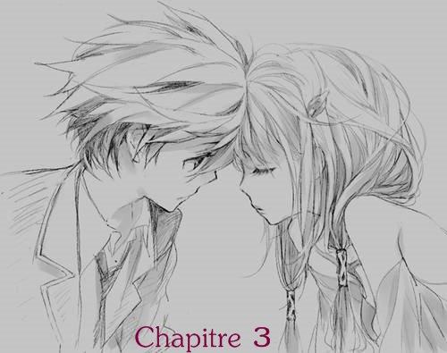 Chapitre 3: Un amour Impossible...
