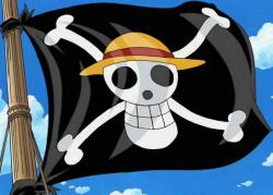 L'équipage du Chapeau de paille