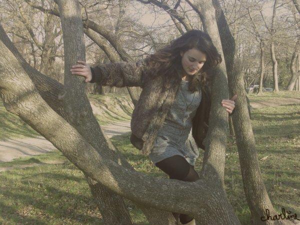 Promenons nous, dans les bois...