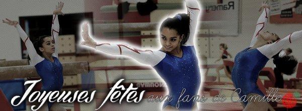 Où soutenir l'équipe de France de gymnastique ?