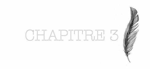 CHAPITRE 3: Passion, Espérance et Détermination