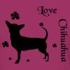 chihuahuas90
