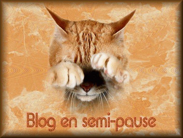 Blog en semi-pause