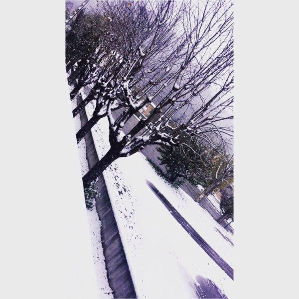 Snow ❄️️