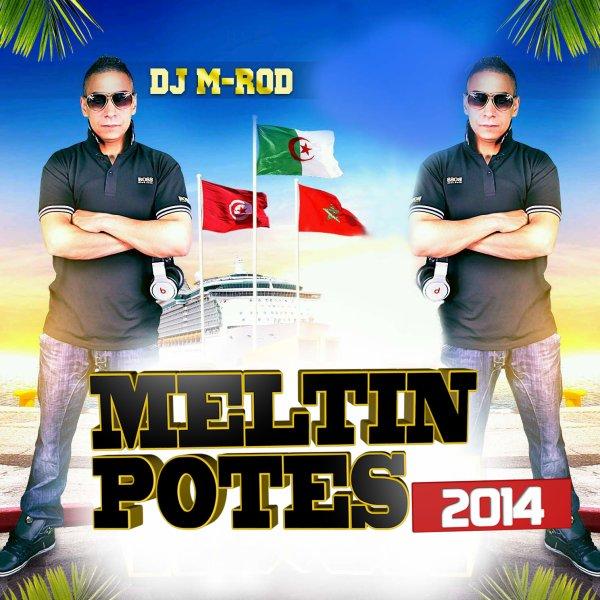 MELTIN POTES 2014 Mixée par DJ M-ROD