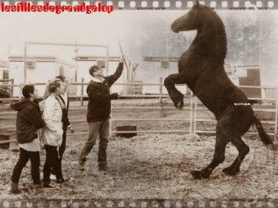 Aisha avec des amis et un cheval