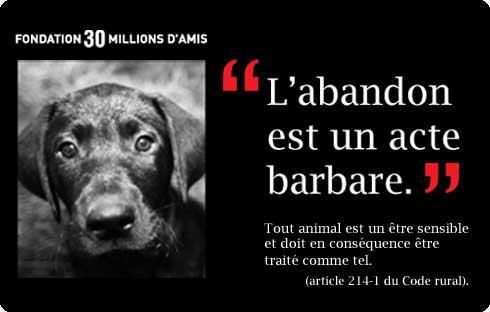 NON AUX ANIMAUX MALHEUREUX !!!!!!!!!!