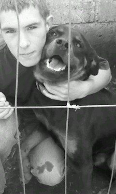 moi et mn chien tyson