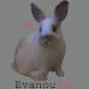 EvanOu2b