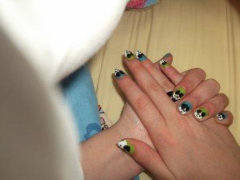 11ème Article : Panda fond vert et bleu.