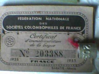bague + carton annee 1955
