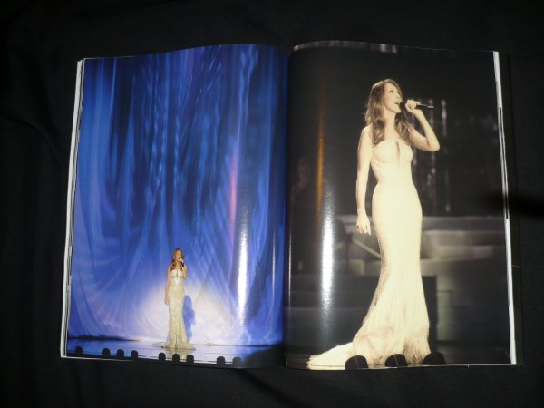 """Céline"" vegas 2011"