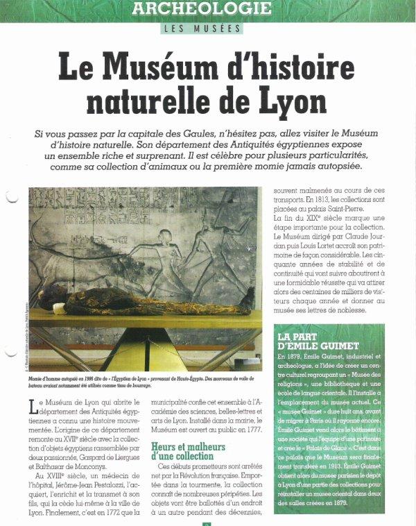 LES  MUSEES  (  DE  LYON  ) .