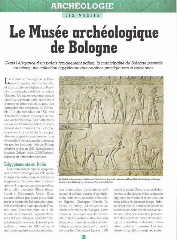 LES  MUSEES  (  DE  BOLOGNE  )  .