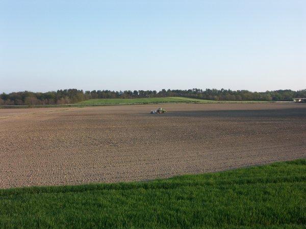 Semis de maïs en 2006