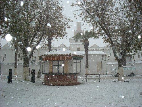 Tlemcen sous la neige !