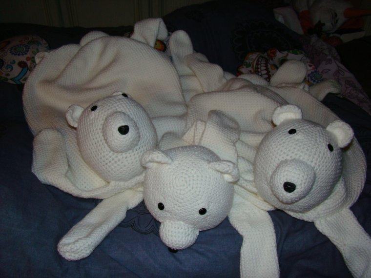 Une invasion d'ours polaire a eu lieu c'est dernier jour, a temps pour Noel