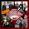 top-fan-de-muse