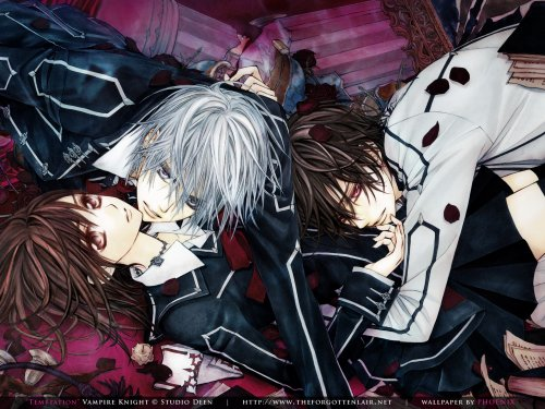 Vampire Knight ☼☾