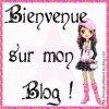 binvenu sur mon blogs