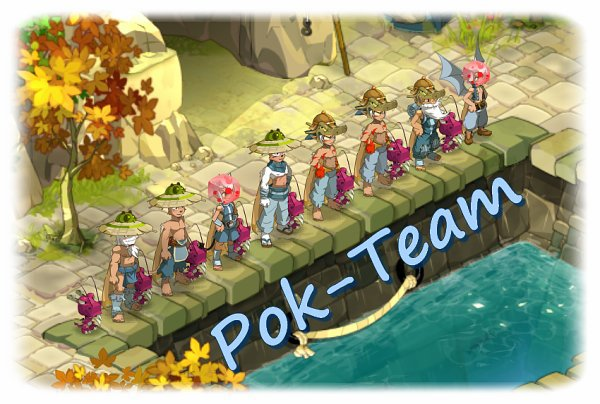 Team 80, Stuffs des persos, Pokedex et Otomai