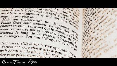 On peut lire un livre mais aussi le vivre :)
