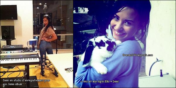 Demi à une conférence de presse avec les Jonas Brothers au Mexique le 24/10/10