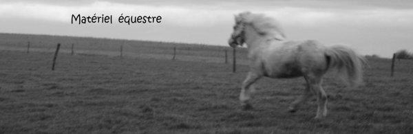 Bienvenue sur Vente-divers-equitation !