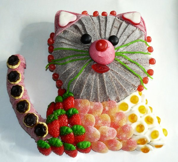 chat en composition bonbon