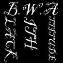 Photo de BWA-music