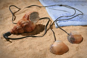 . Thème 1 : Souvenirs de vacances