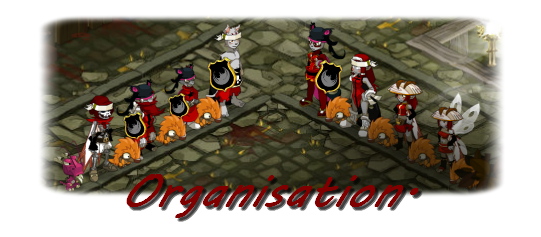 Salcox, Tailleur, Elevage de Dragodinde & Aewin!