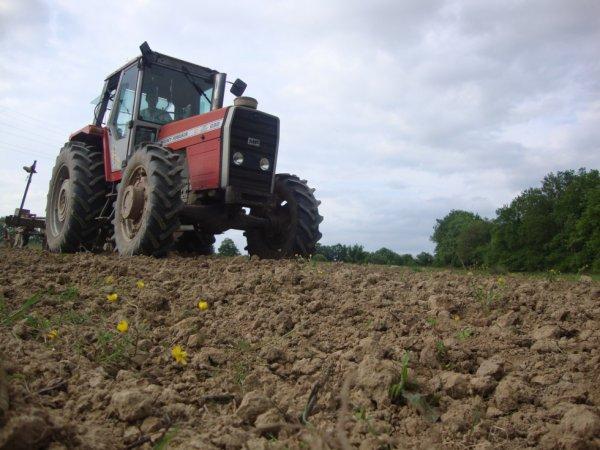 semi de tournesol avec le méme tracteur