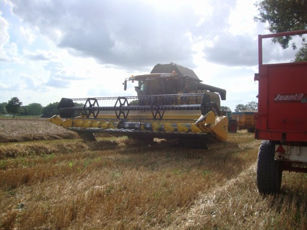 moisson avec new holland