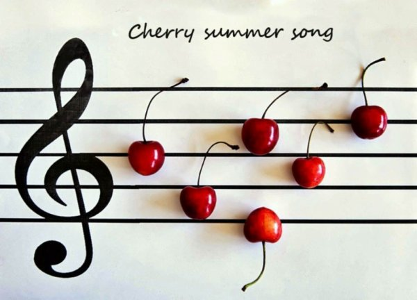 Cherry summer song (source Internet)
