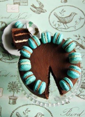 Gâteau au chocolat, garni de Nutella et de macarons à la menthe