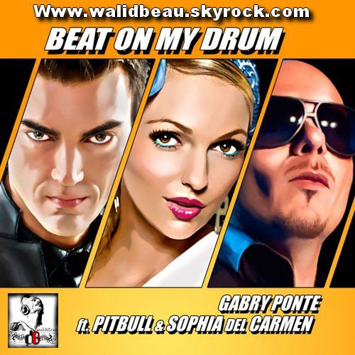 Gabry Ponte ft. Pitbull & Sophia Del Carmen  / Beat On My Drum (2012)