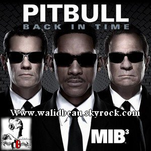 Pitbull  /  Back In Time (2012)