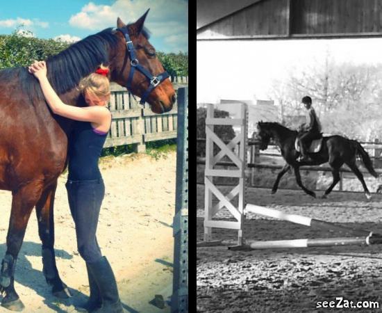 L'équitation , bien plus qu'un sport  ..