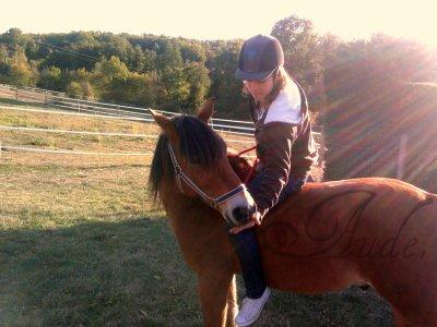 « Il vaut mieux se fier à un cheval sans bride qu'à un discours sans ordre. » ♥