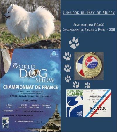 Championnat de France 2011 à Paris