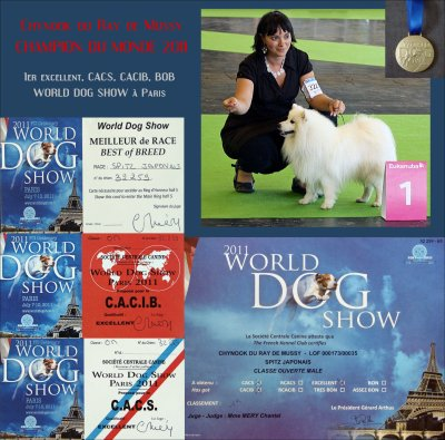 World Dog Show 2011 à Paris