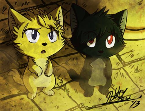 Image coup de coeur ♥ {Fairy Tail}