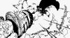 One Piece chapitre 737.