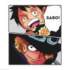 One Piece chapitre 786.
