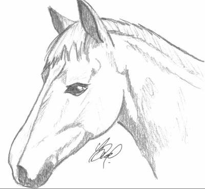 Blog de apero pierro page 13 caricatures et dessins - Dessin facile de cheval ...