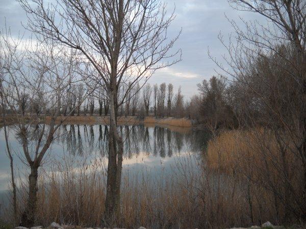 Un lac en Hiver.