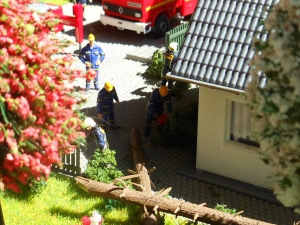 Un arbre tombe sur une maison ( partie 2/3 )