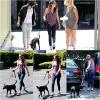 28.07.13 Apparemment Kristen a un nouveau chien qui d'ailleurs resemble à Bear son autre chien :